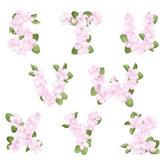Litery sz alfabetu angielskiego z kwiatu jabłoni