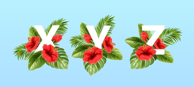 Litery xyz otoczone letnimi tropikalnymi liśćmi i czerwonymi kwiatami hibiskusa