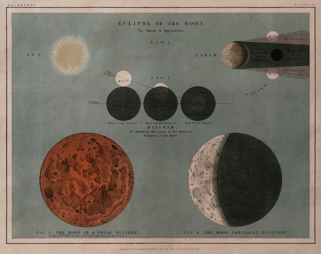 Litografia astronomiczna eclipse of the moon wydrukowana w 1908 roku,