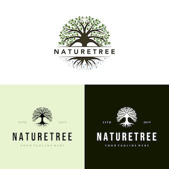 Logo drzewa natura zestaw vintage