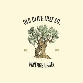 Logo drzewa oliwnego grawerowane lub ręcznie rysowane, stary wygląd godła ekologii, biwakowania lub brandingu żywności
