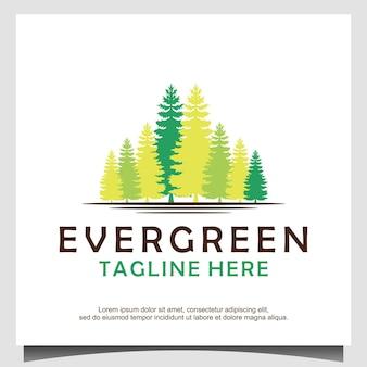 Logo drzewa wiecznie zielone sosny świerk cedr