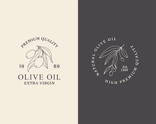Logo linii oliwy z oliwek zarys gałęzi botanicznej z liśćmi i owocami w nowoczesnym stylu minimalistycznym
