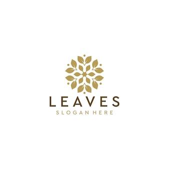 Logo liści deisgn