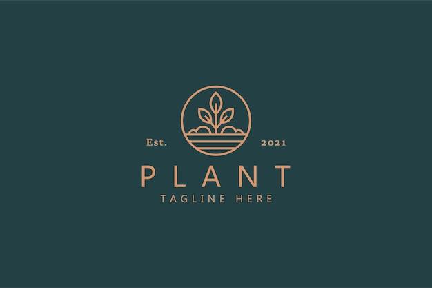 Logo liści roślin natury minimalistyczny