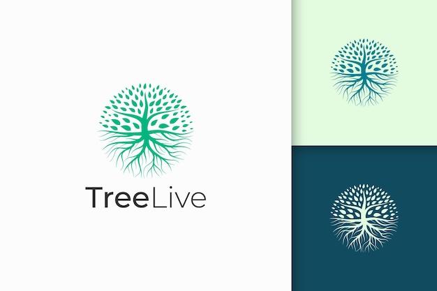 Logo okrągłego drzewa z korzeniem w zielonym kolorze i nowoczesnym kształcie