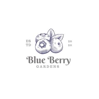 Logo owoców borówki na białym tle