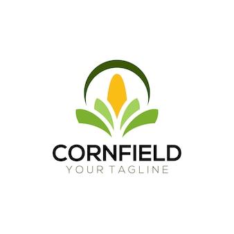 Logo pola kukurydzy