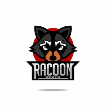 Logo racoon