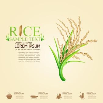 Logo ryżu i realistyczne tło ryżu