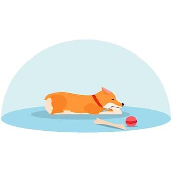 Lone welsh corgi jest smutny bez właściciela. chory szczeniak. płaska ilustracja wektorowa