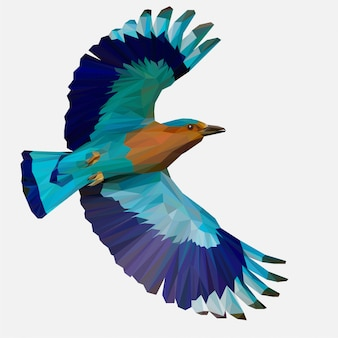 Lowpoly indian roller bird