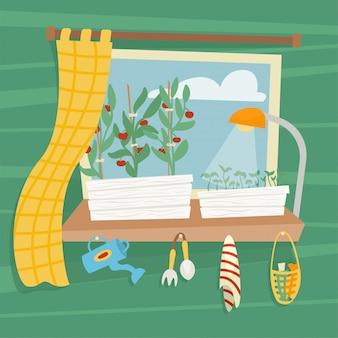 Łóżka z sadzonkami do uprawy warzyw na oknie w mieszkaniu.