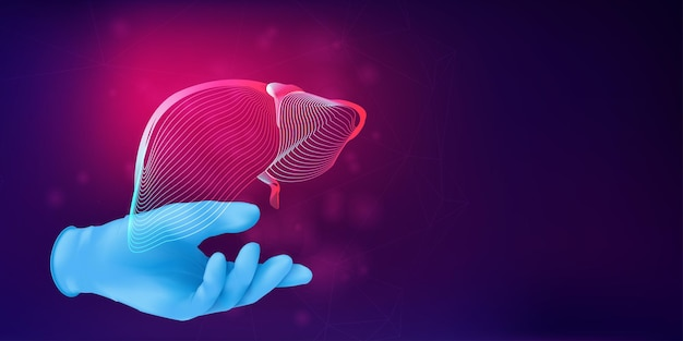 Ludzka wątroba 3d sylwetka na dłoni lekarza w realistycznej gumowej rękawiczce. anatomiczne pojęcie medyczne z szkieletem ludzkiego narządu na abstrakcyjnym tle. ilustracja wektorowa w stylu neonowym lineart