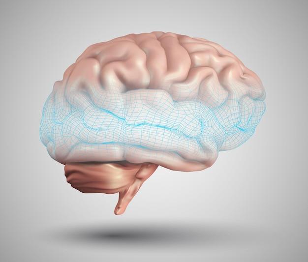 Ludzki mózg i abstrakcyjne elementy projektu. siatka