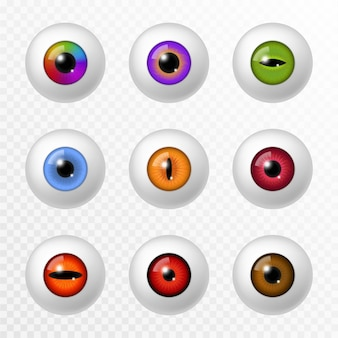 Ludzkie i zwierzęce oko. różne realistyczne kolory gałki ocznej i soczewek, różne okrągłe tęczówki i źrenice. soczewka optyczna, okulistyka 3d wektor na białym tle zestaw