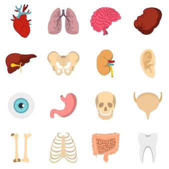 Ludzkie organy ustawiają płaskie ikony