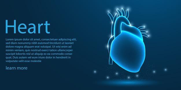 Ludzkie serce medyczne, koncepcja low poly.