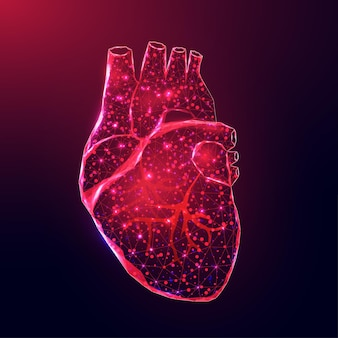 Ludzkie serce. model szkieletowy w stylu low poly. koncepcja nauk medycznych, choroby kardiologiczne. streszczenie nowoczesne 3d wektor ilustracja na ciemnym niebieskim tle.