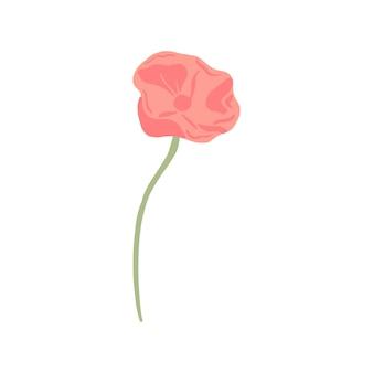 Mak z łodygą na białym tle. szkic wiosenny kwiat różowy. piękna letnia roślina w stylu bazgroły. projektuj na dowolny cel. ilustracja wektorowa.