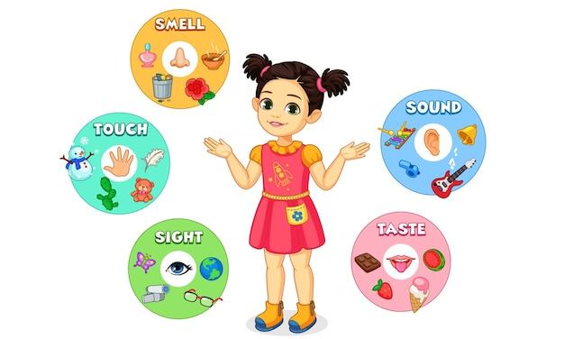 Mała dziewczynka pokazuje ilustrację wykresu pięciu zmysłów