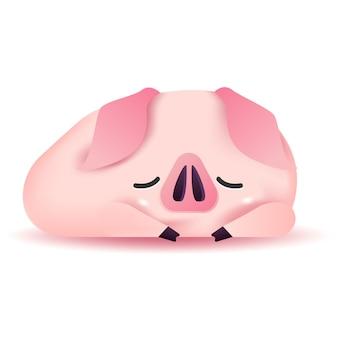 Mała świnia śpi.