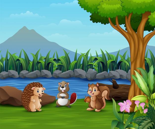 Małe zwierzę bawiące się nad rzeką