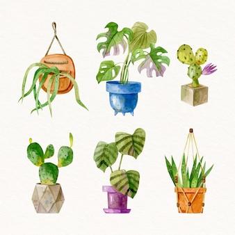 Malowana akwarela kolekcja roślin doniczkowych