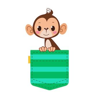 Małpa małpa w kieszeni zielona kieszeń w paski ze zwierzakiem postać z kreskówek