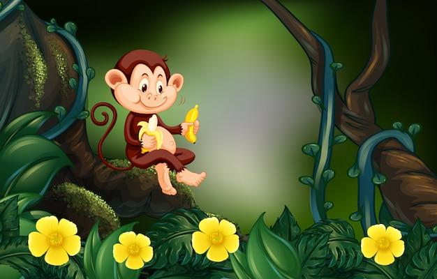 Małpi łasowanie banan w lesie