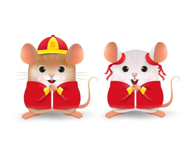 Mały brązowy i biały szczur
