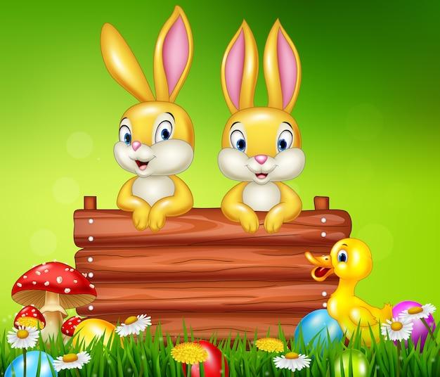 Mały królik z drewnianym znakiem