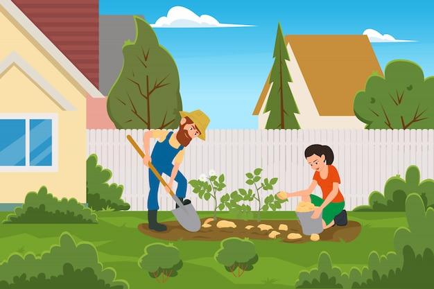 Małżeństwo zbierające ziemniaki na podwórku domu.