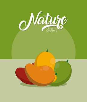 Mango świeże i organiczne owoce
