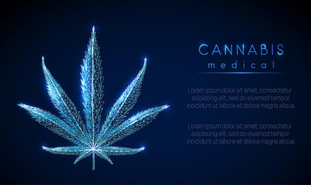 Marihuana medyczna. liść marihuany.