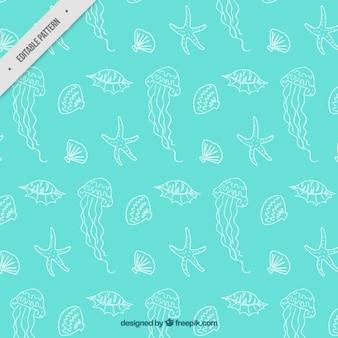 Meduzy i muszle wzór