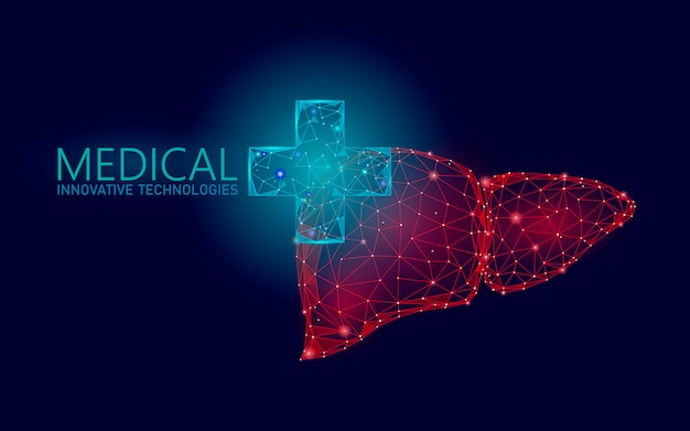 Medyczny przecinający symbol wątróbki lekarki online pojęcie. aplikacja konsultacji lekarskiej. baner sieci web diagnoza opieki zdrowotnej apteka. tło rynku dostaw low poly