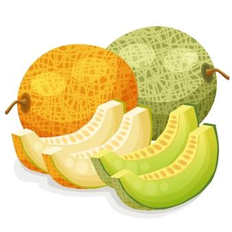 Melon ilustracji wektorowych