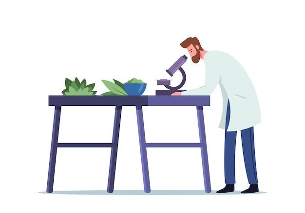 Mężczyzna doktor farmaceuta w medical szata badania właściwości roślin naturalnych przez mikroskop w laboratorium do wytwarzania leków homeopatycznych przemysł, farmacja. ilustracja kreskówka wektor