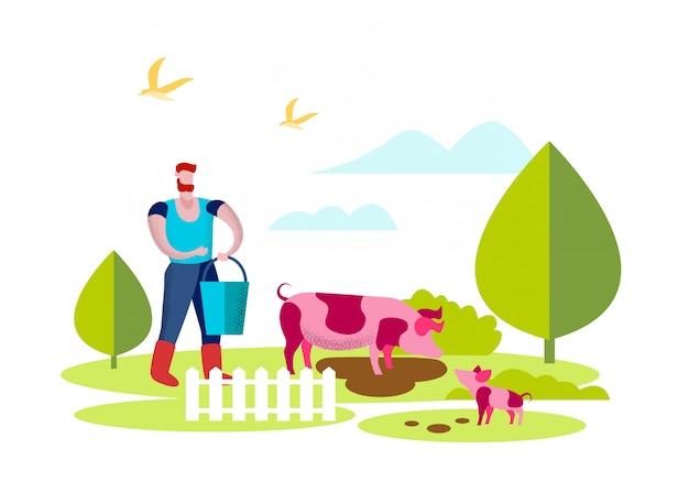 Mężczyzna karmiący świnie w żywym inwentarzu, lato aktywność