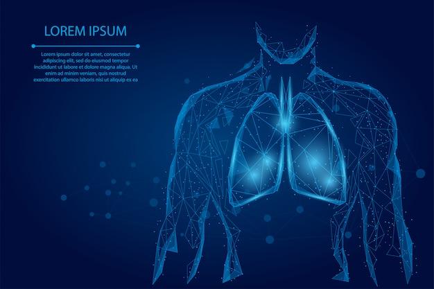 Mężczyzna sylwetka zdrowe płuca połączone kropki low poly szkielet