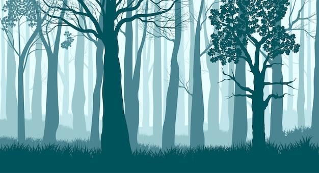 Mglisty las. sylwetki drzew w mglistym głębokim lesie. ciemny niebieski krajobraz. widok z trunks