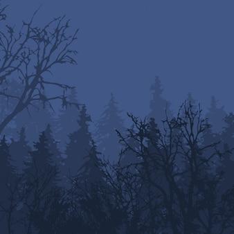 Mglisty las w ponurym krajobrazowym naturalnym plenerowym sosnowym środowisku drzewnym.