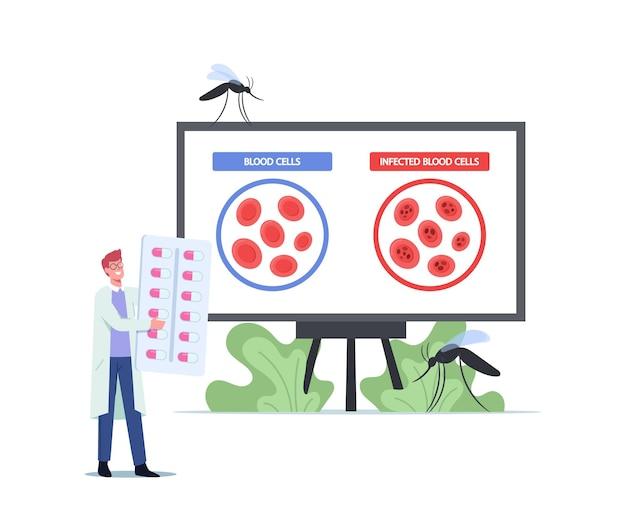 Mikrobiolog naukowiec męski charakter uczący zarażone komórki krwi pasożyty plasmodium przyczyny malaria choroba. mały lekarz z ogromnymi pigułkami przedstawia informacje o komórkach. ilustracja kreskówka wektor
