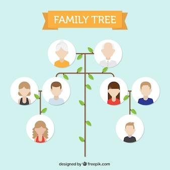 Minimalistyczny drzewo genealogiczne w płaskiej konstrukcji