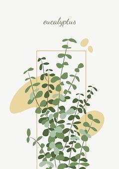 Minimalistyczny projekt plakatu z ilustracjami eukaliptusa