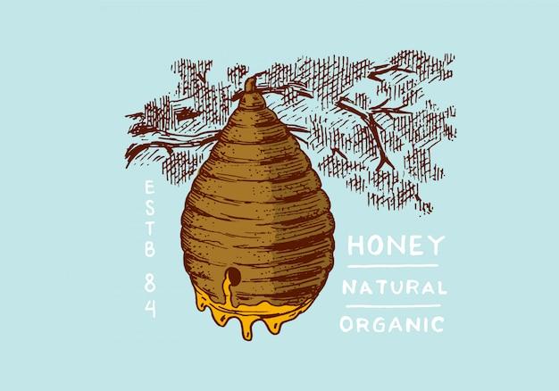 Miód i pszczoły. plaster miodu, ul i pasieka.