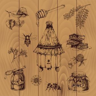 Miód ręcznie rysowane ilustracji
