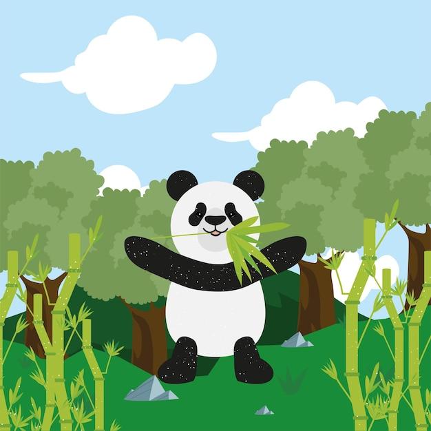 Miś panda z bambusem