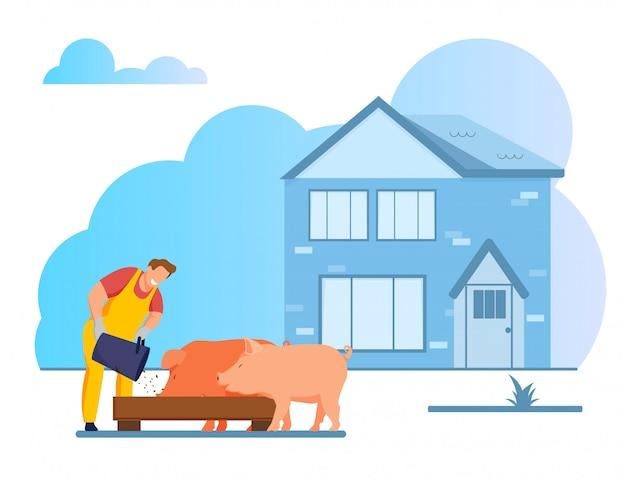 Młody człowiek karmienia świń wprowadzenie ziarna w korycie